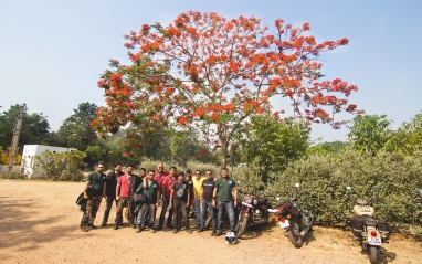 colorful people of BikeBlazers from BOBMC Day Ride....as colorful as Delonix regia/ Gulmohar tree in the background.